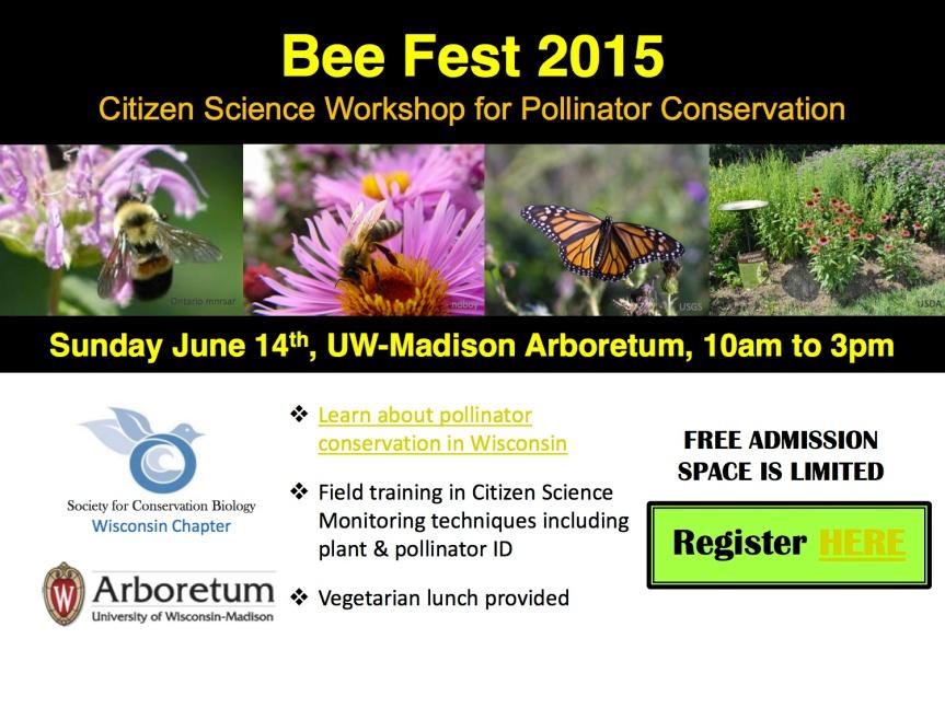 Bee Fest 2015