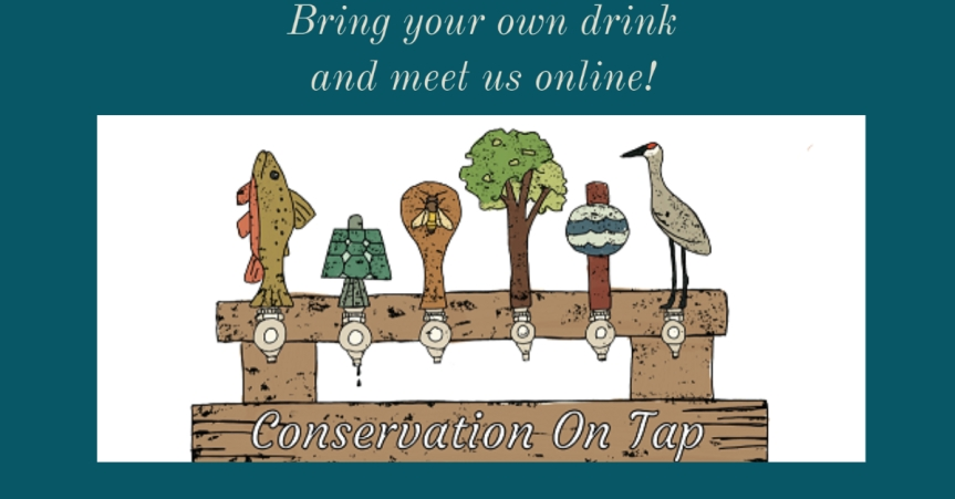 Conservation on tap onlline